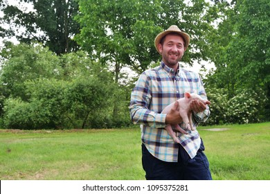 A farmer carefully raises his pigs in a biological way, eating only natural things and letting them live in wide green spaces. Concept of: nature, bio, breeding,
