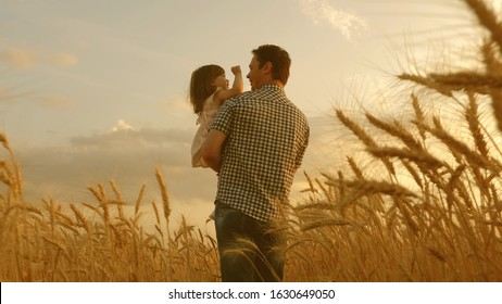 farmer carries little daughter in his arms through a field of wheat. happy child and father are playing in field of ripening wheat. baby boy and dad travel on field. kid and parent play in nature.