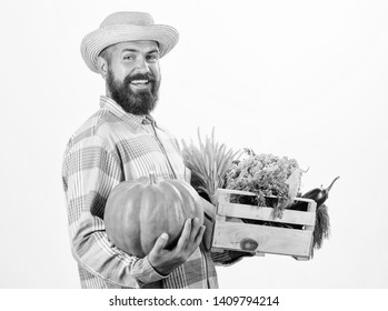 Farmer carry box or basket harvest vegetables. Excellent quality vegetables. Grocery shop concept. Delivery service fresh vegetables from farm. Buy fresh homegrown vegetables. Just from garden.