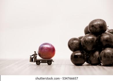 Farmer carrying raspberries red grape. Macro photo.