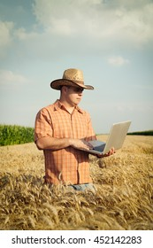 Farmer checking his wheat field and working on laptop computer