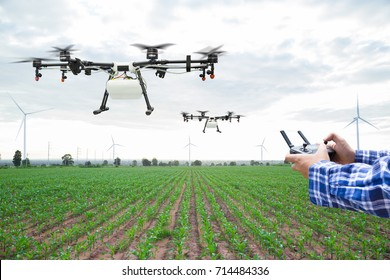 Farmer control agriculture drone fly to sprayed fertilizer on the green corn field