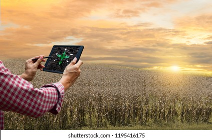 Farmer control tablet agriculture automatic technology future tree care and tree planting drought global warming the tree withered hot sun