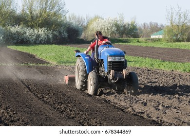 Farmer cultivates the ground on the tractor
