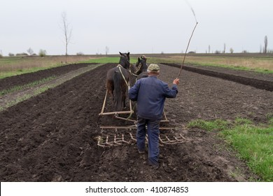 A farmer cultivates the land with the help of horses and harrows, hand, old-fashioned method.