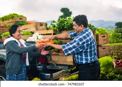 Farmer delivering carrots to an indigenous woman in a rural area of Guatemala.