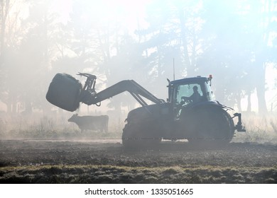 A farmer directs his front end loader through the fog to a feeding out paddock on a West Coast dairy farm, New Zealand