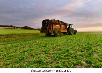 farmer dispersing manure in fields