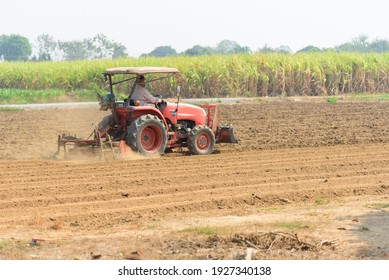 Farmer drive the Tractor Plow the soil for prepair sapling the vegetable