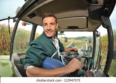 Farmer driving tractor in corn field