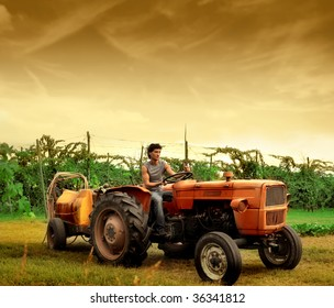 farmer driving tractor in a vineyard