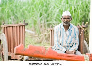 Farmer in empty bull cart, rural village, Salunkwadi, Ambajogai, Beed, Maharashtra, India.