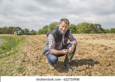 farmer examine quality of soil in field