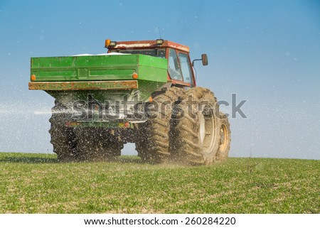 Farmer fertilizing wheat with nitrogen, phosphorus, potassium fertilizer