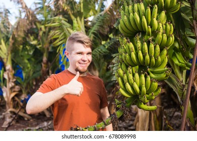Farmer giving thumbs up on banana plantation