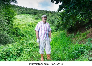 Farmer in the green field