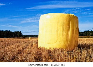 The farmer has wrapped the hay bale in the yellow plastic. The fields of gold have been filled with shiny yellow eggs at the Northern Finland.