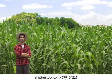 Farmer with hat smiling in cultivated corn field plantation. Concept Image.