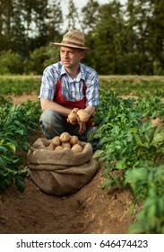 farmer at his potato field