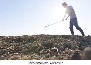 farmer hoeing farmland