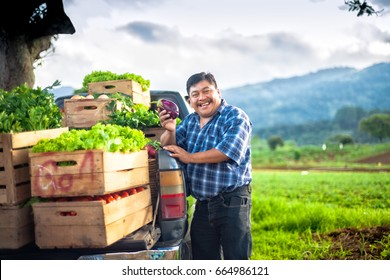 Farmer holding an eggplant,in a rural area of Guatemala.