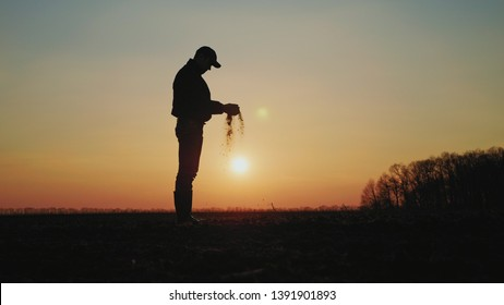 Farmer holding soil in hands at sunset. Male hands touching soil on the field. Farmer is checking soil quality before sowing wheat.