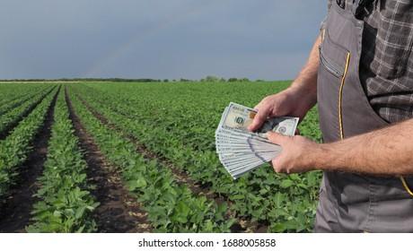 Bauer, der US-Dollar-Banknote mit grünem, bebautem Sofas-Himmel und Regenbogen auf dem Hintergrund hält