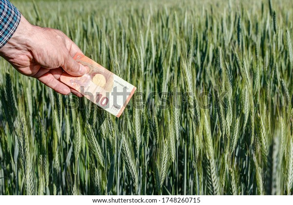 A farmer holds a 10 euro banknote in his wheat field. What are people willing to pay for the work of their farmers and for food?