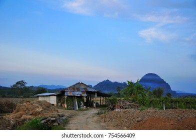 A farmer house located next to rice field with foggy-mountain background during afternoon time in winter season, Chiangrai, Thailand