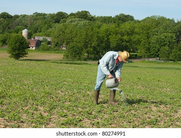 farmer irrigating his crop with a watering can