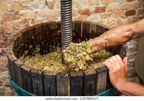 L'agriculteur garde dans sa main le moût blanc d'une presse à vin
