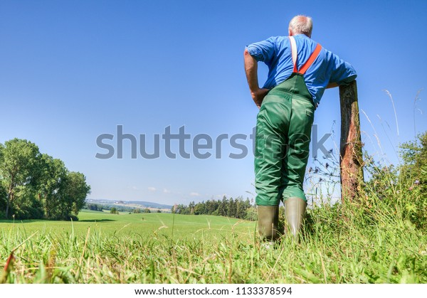 A farmer leaning on a wooden pole and look at his mowed meadow valley on a beautiful sunny summer day.