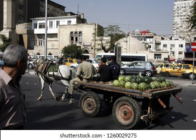 a farmer with melons on a horse cart in the city centre of Damaskus before the war in Syria in the middle east.       Syria, Damascus, April, 2009