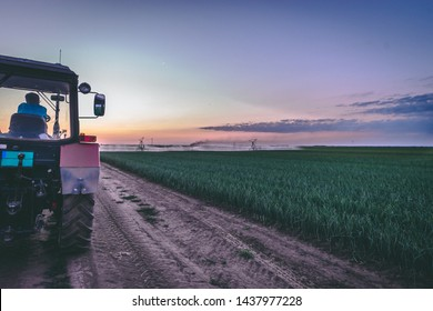 Farmer overlooking watering process during sunset dusk. Moody Scene.