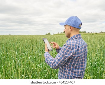 Farmer in a plaid shirt controlled his field and looking at tablet. Male farmer checks the harvest. Man farmer He takes notes.