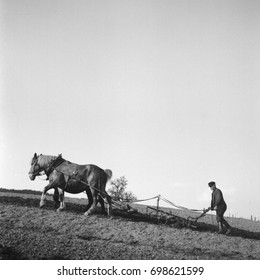 Farmer plowing field with horse-drawn plough under clear sky