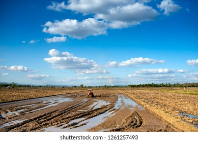 The farmer is plowing to prepare the farmland with the tractor in the day of beautiful blue sky, sunlight and egret bird find food,concept of agriculturist lifestyle