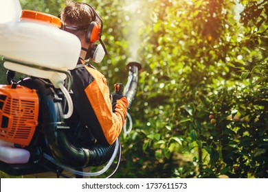 Farmer protecting his plants with chemicals. Spraying pesticide.
