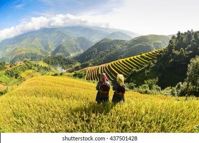 Farmer in rice terrace,Vietnam