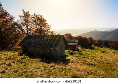 The farmer rustic house. Summer landscape.