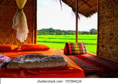 Farmer School Homestay is surrounded by rice fields in Sila Phet , Nan province ,Thailand