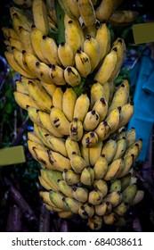 Farmer sell a bunch of Banana