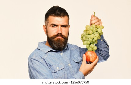 Farmer shows his harvest. Man with beard holds bunch of green grapes and apple isolated on white background. Viticulture and gardening concept. Winegrower with strict face holds grapes and red fruit