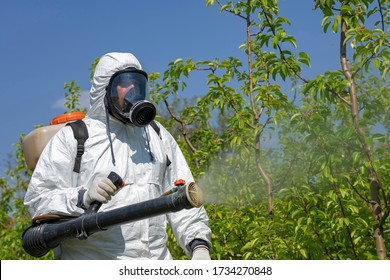 Farmer Spraying Fruit Orchard With Motorized Backpack Atomizer Sprayer. Man in Coveralls With Gas Mask Spraying Orchard in Springtime. Farmer Sprays Trees With Toxic Pesticides or Insecticide.