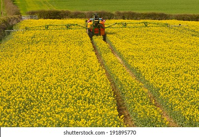 Farmer spraying his rape seed crop, also known as canola and increasingly used for bio fuel production.