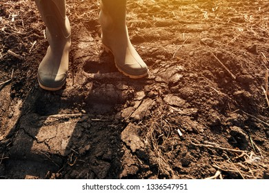 Farmer standing on dirt country road, close up of rubber wellington boots