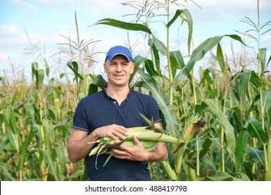 farmer standing on field during harvest
