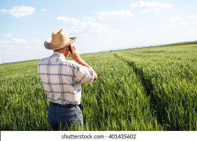 Farmer standing in a wheat field and talking on phone