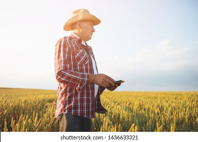Farmer standing in a wheat field using modern technologies in agriculture.  Farmers with tablet in a wheat field.