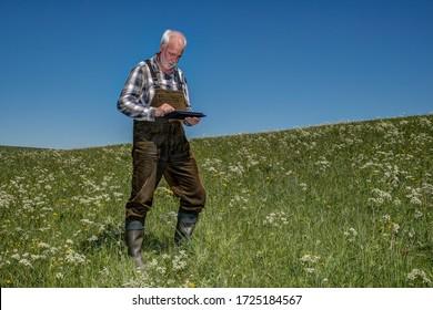 Un fermier est debout avec un Tablet PC sur son pré bio. L'agriculture mobile est un moyen efficace de gérer les zones cultivées et les données sont disponibles sur place en tout temps.